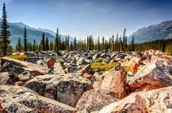 Road from boulders and rocks in the rocky mountains of Canada. In a clear summer day stock image