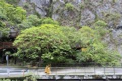 Road bridge of taroko gorge, taiwan Royalty Free Stock Photo