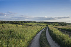 The road in a bright green field, overgrown with tall grass, on the horizon in the distance a forest, a blue sky with clouds. Land Stock Photo