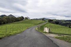 Road through the bush Stock Photos