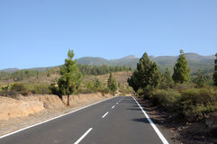 Road on Canary Island Tenerife Royalty Free Stock Images