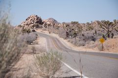 Road with a car disappearing in the distant dessert at Yoshua Tr. Ee national park, California, USA Stock Image