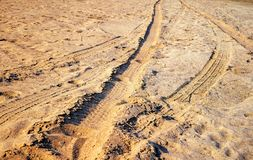 Road car tyre track on sandy beach. Close view Stock Image