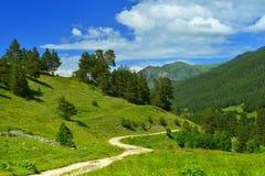 Road in Caucasus Royalty Free Stock Image