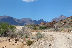 Road into the Chisos. Back road in Big Bend National Monument that leads into the Chisos Mountains stock photography