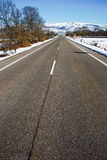 Road. Clear road in a snowy landscape Stock Photography
