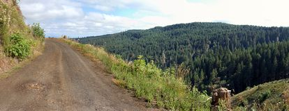 Road on a cliff with view. A logging road that is high in elevation in the mountains Royalty Free Stock Photos