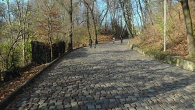 Road from the cobblestone park in the city of Lviv stock video
