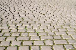 Road from cobblestones. Between the stones the green grass grows stock images
