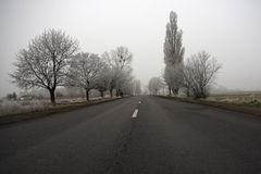 Road on a cold foggy winter's day Royalty Free Stock Images