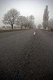 Road on a cold foggy winter's day Stock Image
