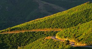 Road in corsica mountains Stock Image