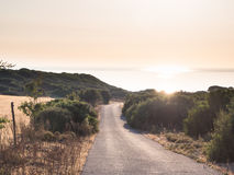 Road country sunset Stock Image