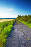 Road in the countryside Stock Image