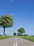 Road in countryside Stock Image