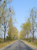 Road in the countryside. Road in Brasov county, Romania, at the end of summer Stock Image