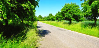 Road in the countryside Royalty Free Stock Image