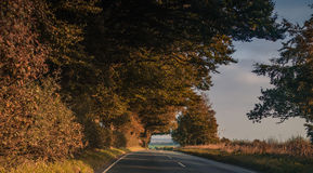 Road on the countryside in autumn Royalty Free Stock Photos