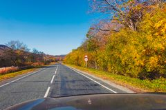 Road in countryside with beatiful nature in autumn season. And clear blue sky stock photos