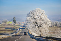 Road through countryside. Road through the countryside covered with frost Royalty Free Stock Photos