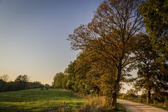 Road in the countryside Royalty Free Stock Images