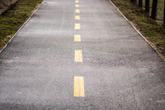 Road in countryside Royalty Free Stock Image