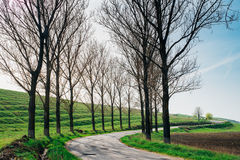 Road in countryside Stock Photography