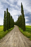 Road in the countryside Stock Photography