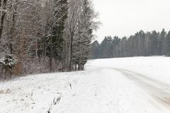 Road covered with snow in the forest Stock Images