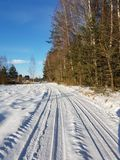 Road covered by snow. Small village road, by the forest during winter, covered by snow Royalty Free Stock Image
