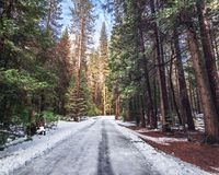 Road covered with snow at winter - Yosemite National Parl, California, USA royalty free stock photography