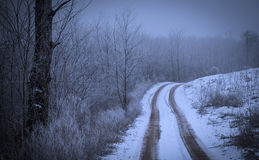 Road covered winter snow. In the forest Stock Photo