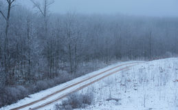 Road covered winter snow. In the forest Stock Image
