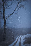 Road covered winter snow. In the forest Stock Photography