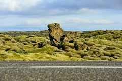 Road crossing a lava field overgrown with mosses. Lava field at Eldhraun, Iceland. Focus on background Stock Image