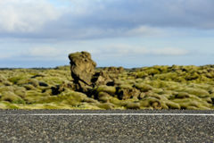 Road crossing a lava field overgrown with mosses Royalty Free Stock Images