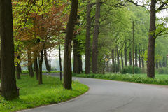 Road with a curve in the Dutch landscape Royalty Free Stock Photo