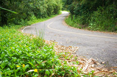 Road. Curve Road with green sidewalk background Stock Image