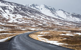 Road curve in Iceland. This is a photo of  road curve in Iceland Stock Photography