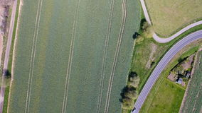 Road curve through wheat fields. Road through wheat fields - aerial view stock video