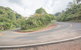 Road curves in forest Royalty Free Stock Photography