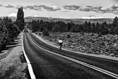 Road Cyclist Rides Toward Mountains Stock Photography