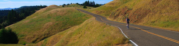 Road Cyclist on road. A panoramic image of a road cyclist along a stretch of road along Mt. Tamalpais in Marin County, California Royalty Free Stock Image
