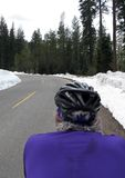 Road cyclist in snow. Road cyclist in purple on mountain road in snow Royalty Free Stock Images