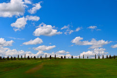 Road with cypress trees in the fields of Tuscany. In the background of the sunny sky with clouds stock photo