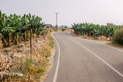 Road in Cyprus Royalty Free Stock Images