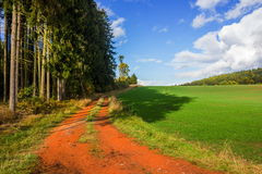 Road in Czech countryside. Summer road in Czech countryside royalty free stock image