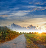 Road at dawn Stock Photography