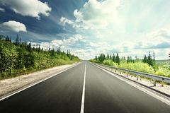 Road in deep forest royalty free stock photo