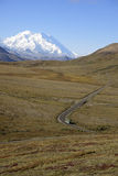 Road in Denali Stock Photos